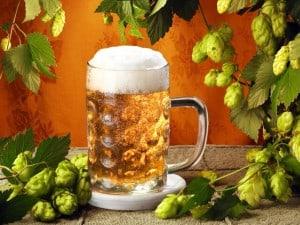 Секрет притягательности пива