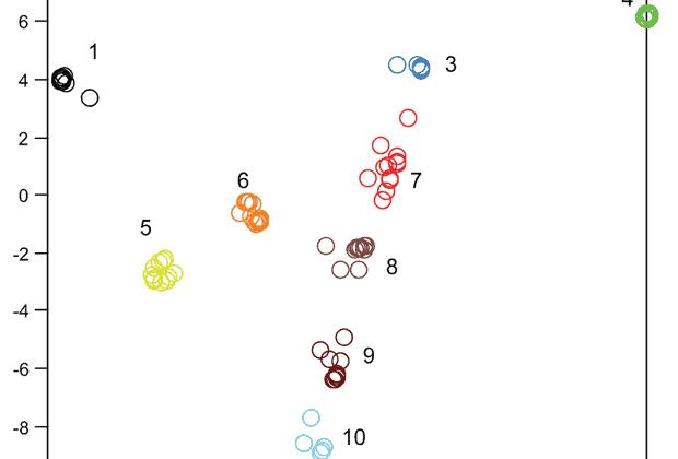 vonyuchaya-algebra