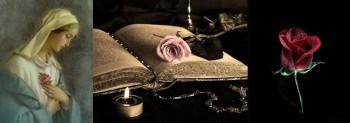 Роза: символ